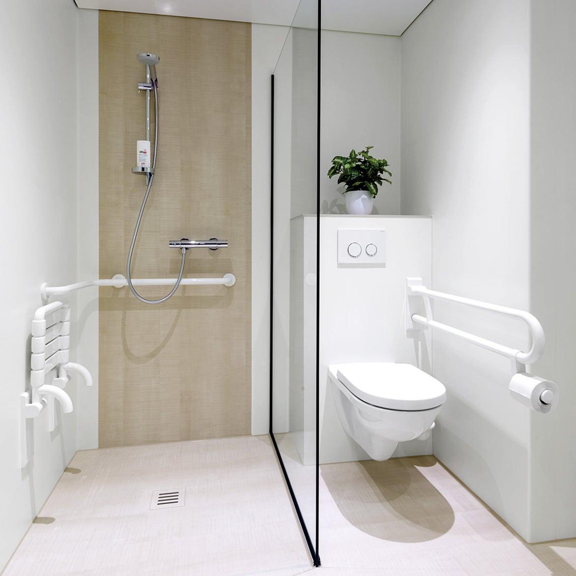 Walk in Dusche mit WC und Wandverkleidung